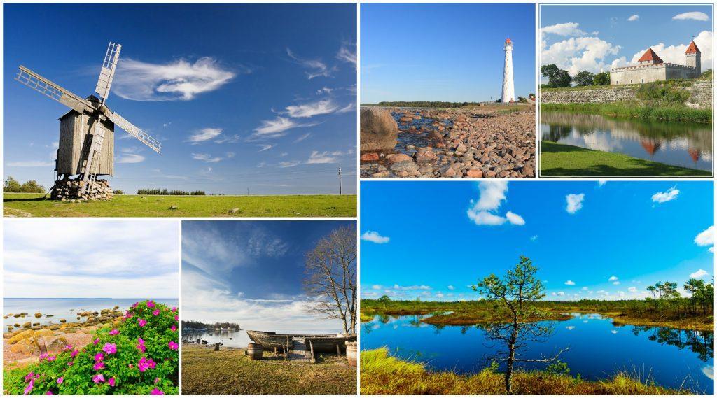 estonia_islands_forest_nature_tours