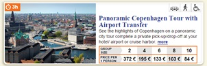 Panoramic Copenhagen Tour with Airport Transfer