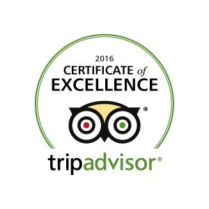 2016_logo_tripadvisor_estonianexperience