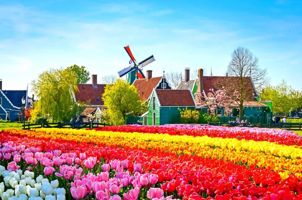 Stunning Zaanse Schans windmill village
